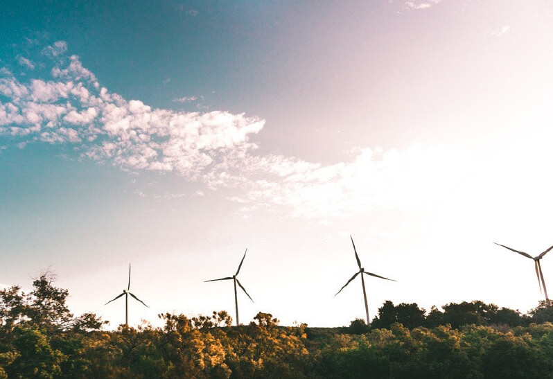 Windräder Regenerative Energie Wald Sonne Himmel