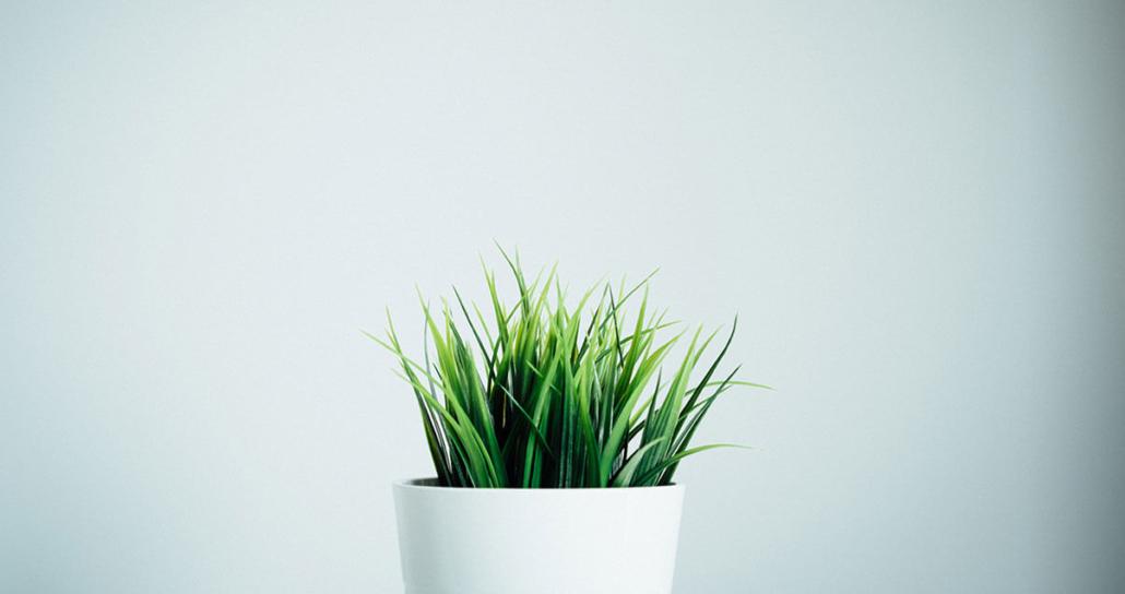 Nachhaltigkeit Grüne Unternehmen