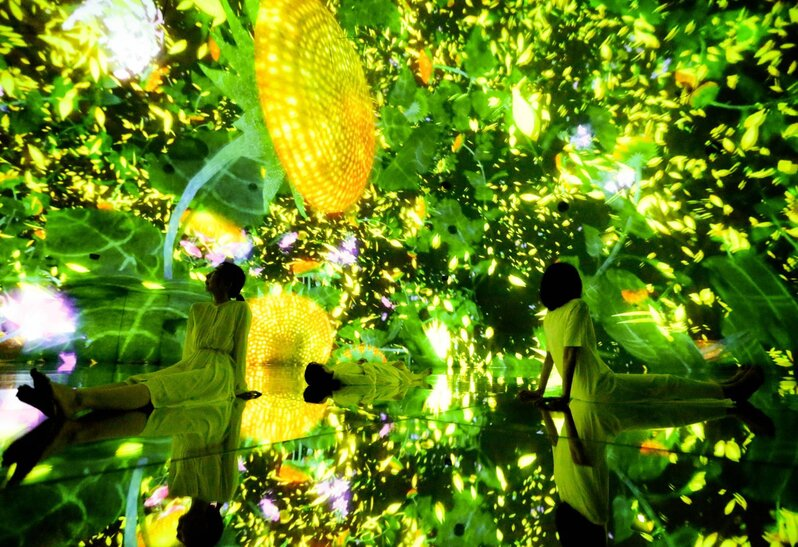 Teamlab Nature Art Sustainability Planet Tokyo
